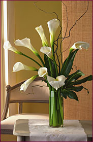 Fresh Calla Lilies from Cuts Creative Florist in Roanoke Virginia