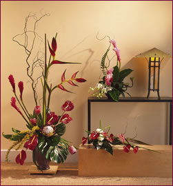 High Style and Tropical arrangements from your Roanoke Virginia Flower Shop