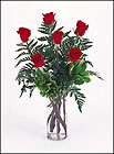 1/2 Dozen  Roses arranged in vase