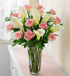 Pink Roses and Calla lillies